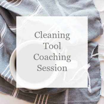 Cleaning Tool Coaching Session